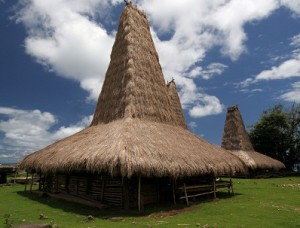 sumba traditional house